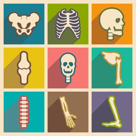 Stel vlakke pictogrammen met lange schaduw menselijk skelet