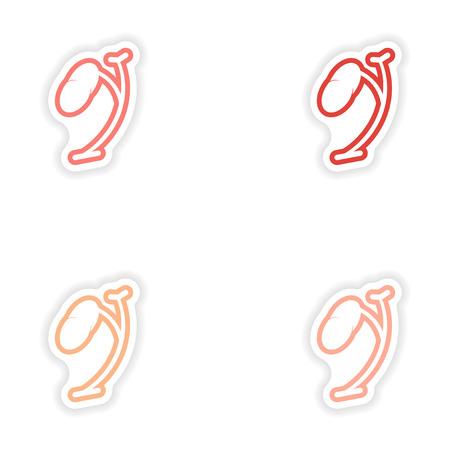 parotid: Set of paper stickers on white background spleen Illustration