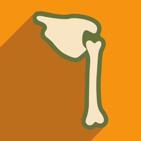 flat icon with long shadow human bone