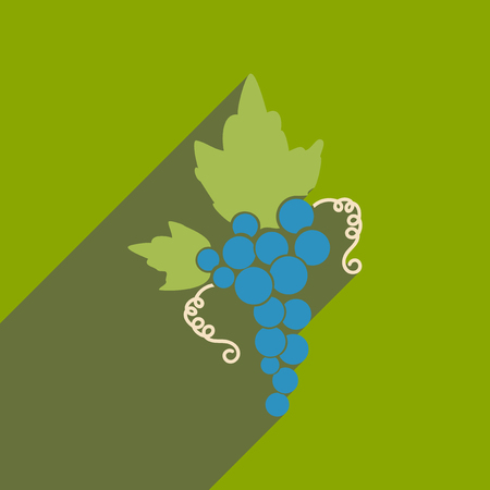 Flat web icon with long shadow bunch of grapes