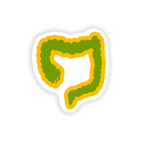Paper sticker on white background Duodenum human