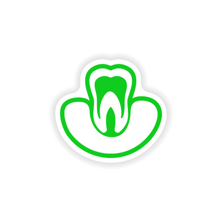 Tooth on gums paper sticker icon.