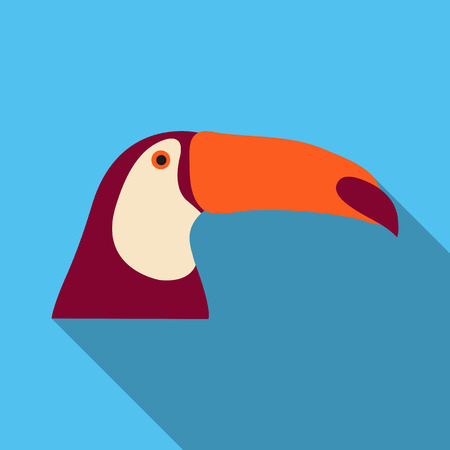 brazilian toucan bird nature Vector illustration.