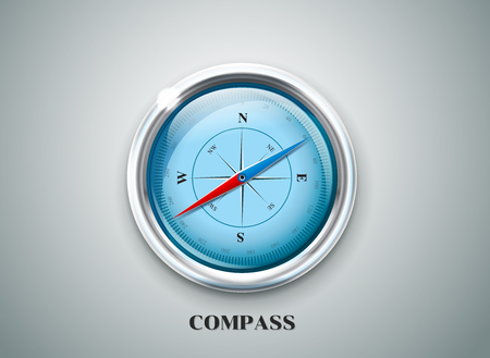 compass rose: Compass wind rose.