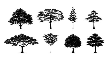 Silhouet boom.Vector bomen in silhouetten set Stock Illustratie