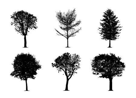 l'albero di sagoma su sfondo bianco. Set di alberi vettoriali in sagome Vettoriali