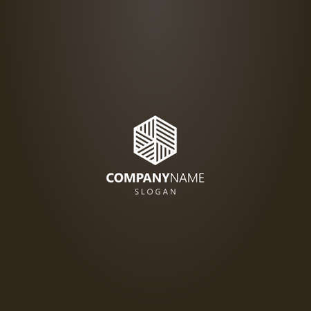 white logo on a black background. vector line art logo of a hexagon divided into striped parts of different sizes and directions Çizim