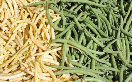 Green and yellow haricot bean pods at a market stand. photo