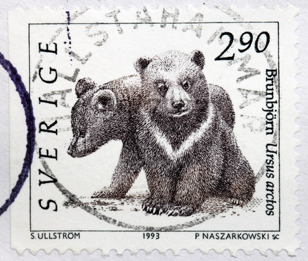 SWEDEN - CIRCA 1993: A stamp printed by SWEDEN shows two brown bear cubs (Ursus arctos) - bears distributed across much of northern Eurasia and North America, circa 1993.