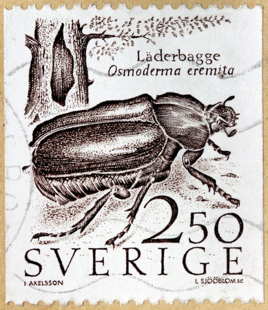 scarabaeidae: SWEDEN - CIRCA 1987: A stamp printed by SWEDEN, shows Hermit beetle  or Russian leather beetle - species of European beetle in the family Scarabaeidae (Osmoderma eremita), circa 1987 Editorial