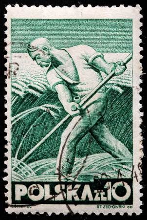 POLAND - CIRCA 1947: A stamp printed by POLAND shows Farmer harvests, circa 1947