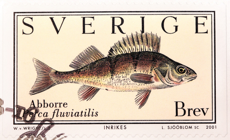 SWEDEN - CIRCA 2001: A stamp printed by SWEDEN shows European Perch (Perca fluviatilis), circa 2001