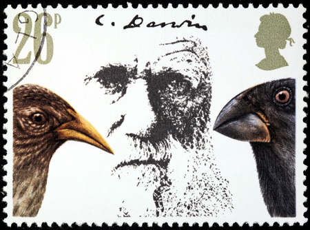 animal origin: UNITED KINGDOM - CIRCA 1982: A stamp printed by UNITED KINGDOM shows image portrait of  English naturalist and geologist Charles Robert Darwin, circa 1982 Editorial
