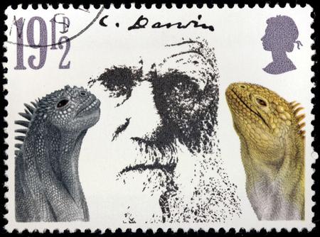 origen animal: REINO UNIDO - CIRCA 1982: Un sello impreso por muestra de Reino Unido retrato de la imagen del naturalista Inglés y geólogo Charles Robert Darwin, alrededor del año 1982