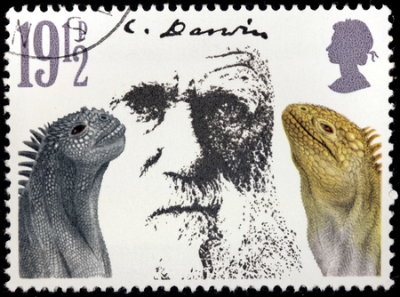 naturalist: UNITED KINGDOM - CIRCA 1982: A stamp printed by UNITED KINGDOM shows image portrait of  English naturalist and geologist Charles Robert Darwin, circa 1982 Editorial