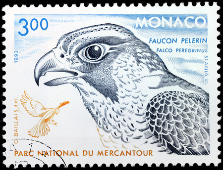 MONACO - CIRCA 1993: A stamp printed by MONACO shows Peregrine Falcon (Falco peregrinus), also known as the Peregrine, and historically as the Duck Hawk in North America, circa 1993.