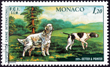 MONACO - CIRCA 1979: A stamp printed by MONACO shows two dogs - setter and pointer, circa 1979