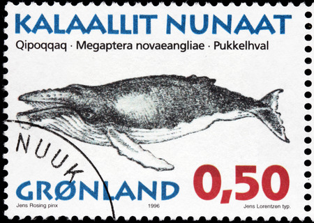 megaptera novaeangliae: GREENLAND - CIRCA 1996: A stamp printed by DENMARK shows image of The Humpback Whale (Megaptera novaeangliae) - a species of baleen whale, circa 1996