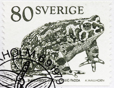 viridis: SWEDEN - CIRCA 1979: A stamp printed by SWEDEN shows European Green Toad or Green-spotted Toad (Bufo viridis), circa 1979