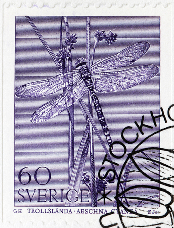 millimetres: SWEDEN - CIRCA 1979: A stamp printed by SWEDEN shows The Southern Hawker or Blue Hawker (Aeshna cyanea) - 70 millimetres (2.8 in) long species of hawker dragonfly, circa 1979 Editorial