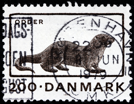 DENMARK - CIRCA 1976: A stamp printed by DENMARK shows European otter (Lutra lutra), also known as the Eurasian otter, Eurasian river otter, common otter and Old World otter, circa 1976