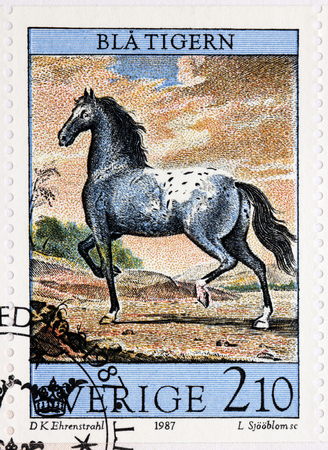 SWEDEN - CIRCA 1987: A stamp printed by SWEDEN shows Kings Charles XI horse called the Blue Tiger. Engraving after painting of the Court Painter David Ehrenstrahl, circa 1987