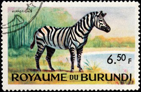 equid: BURUNDI - CIRCA 1964: A stamp printed by BURUNDI shows Zebra - African equid (horse family) with distinctive black and white striped coats, circa 1964