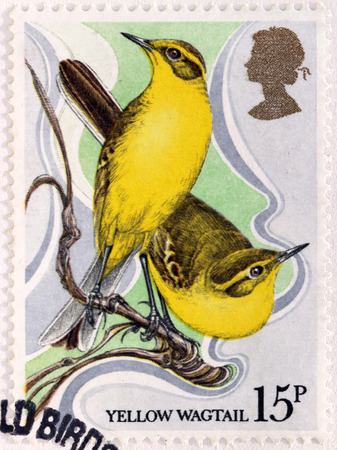 motacillidae: UNITED KINGDOM - CIRCA 1980: A stamp printed by GREAT BRITAIN shows The Western Yellow Wagtail (Motacilla flava) - a small passerine in the wagtail family Motacillidae, circa 1980 Editorial