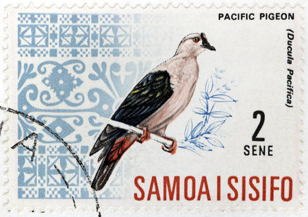 widespread: WESTERN SAMOA - CIRCA 1967: A stamp printed by WESTERN SAMOA, shows Pacific Imperial Pigeon (Ducula Pcifica) - a widespread species of pigeon in the family Columbidae, circa 1967. Editorial