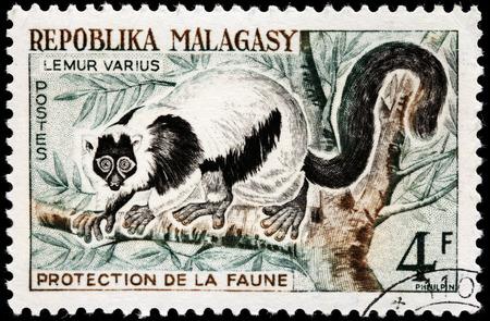 extant: MADAGASCAR - CIRCA 1961: Un sello impreso por MADAGASCAR muestra Lemur superado de g�nero Varecia - primates strepsirrhine y grandes l�mures existentes dentro de la familia Lemuridae, alrededor de 1961