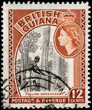 indian postal stamp: BRITISH GUIANA - CIRCA 1954: A stamp printed by BRITISH GUIANA shows Felling Greenheart, circa 1954