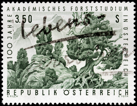 treeline: AUSTRIA - CIRCA 1967: A stamp printed by AUSTRIA shows beautiful view of the Swiss Pine (Pinus cembra) in the upper treeline of a forest, circa 1967 Editorial