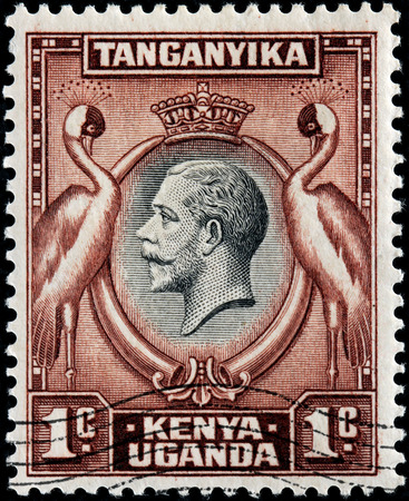 EAST AFRICAN COMMUNITY - CIRCA MAY, 1935: A stamp printed by EAST AFRICAN COMMUNITY shows portrait of King George V against two Grey Crowned Cranes