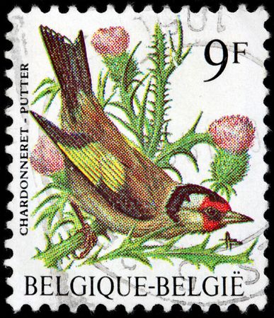 goldfinch: BELGIUM - CIRCA 1997: A stamp printed by BELGIUM shows The European Goldfinch or Goldfinch - a small passerine bird in the finch family, circa 1997. Editorial