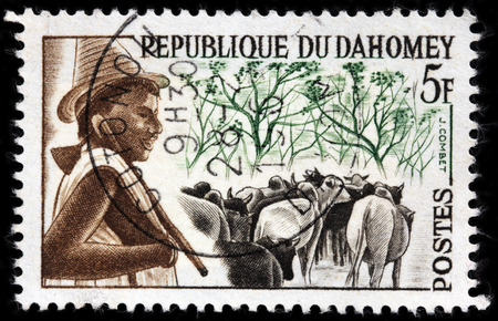 herdsman: LUGA, RUSSIA - APRIL 12, 2016: A stamp printed by DAHOMEY shows Peuhl Herdsman and Cattle, circa 1963 Editorial