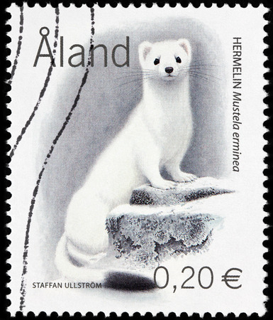 LUGA, RUSSIA - AUGUST 20, 2017: A stamp printed by ALAND ISLANDS shows Stoat (Mustela erminea), also known as the short-tailed Weasel in winter fur, circa 2004