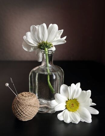 Still life with thread, pin, sewing needle and two white daisy flowers in the small vintage glass botlle against a low key background. Choose a focal point.