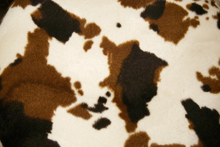 cowhide: Cowhide dapple background