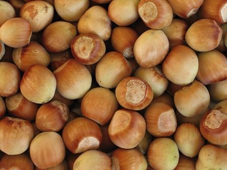 Hazelnuts Tonda