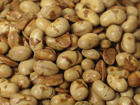 Roast soya photo