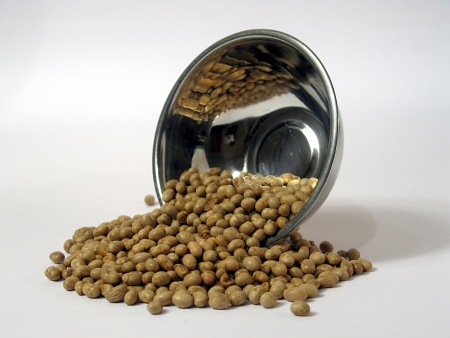 Soya bean roasted,white background photo