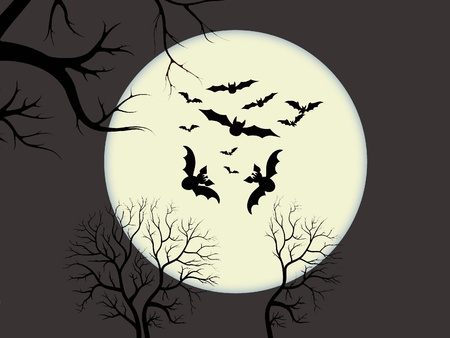 Bats flying on moonlight scene photo
