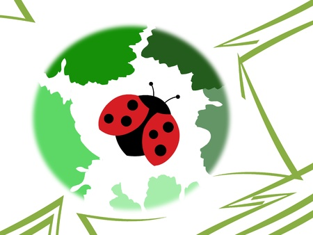 Ladybug on ilustrate background Фото со стока