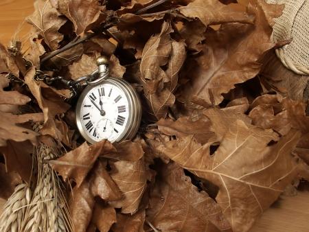 autmn: Time for autmn
