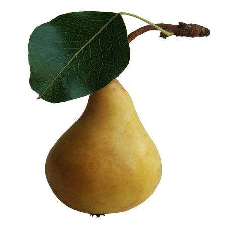One pear with leaf Stock Photo