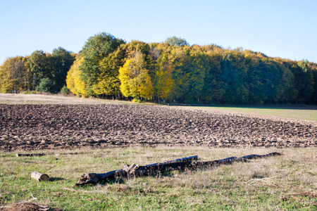 Farmer fields are processed after harvesting in the autumn