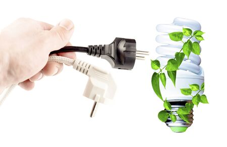 plug in: Plug in your hand, incandescent lamp on a white background