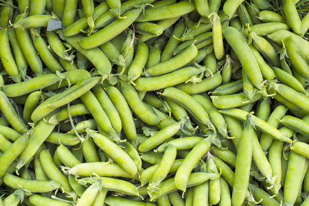 disrupted: Texture - fresh green peas in pods harvested from the garden Stock Photo