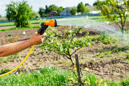 homemaker: Watering water from a hose garden flowers on a background of the garden