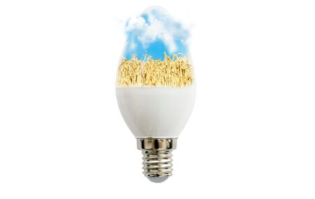 led lamp: LED lamp with a picture of wheat field inside on a white background